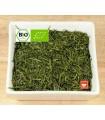 Té verde japonés Asamushicha - BIO